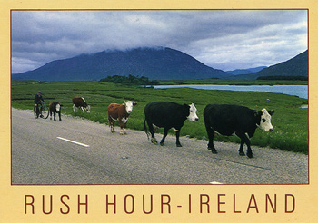 Rush Hour Ireland